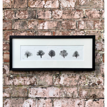 Print Trees in a Line