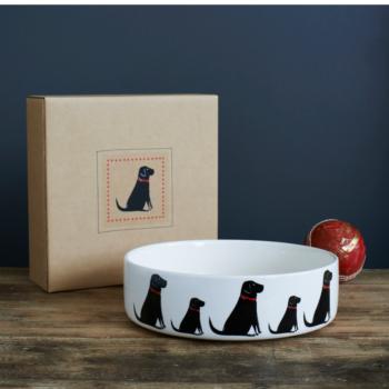Dog Bowl Labrador