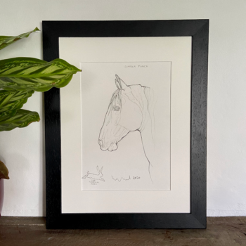 Horse Prints by Susan Leyland Wise