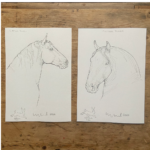Horse Prints by Susan Leyland