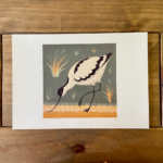 A is for Avocet Bird Print